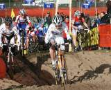 Vos powers through the sand. ? Bart Hazen