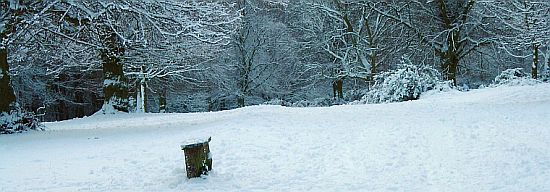 Sutton Park in the Snow. Photo courtesy British Cycling