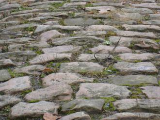 The Arenberg Forest cobbles, photo by ...