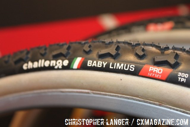 Challenge's Baby Limus, with 50% lower center knobs, 75% transition knobs and normal sides. © Christopher Langer.