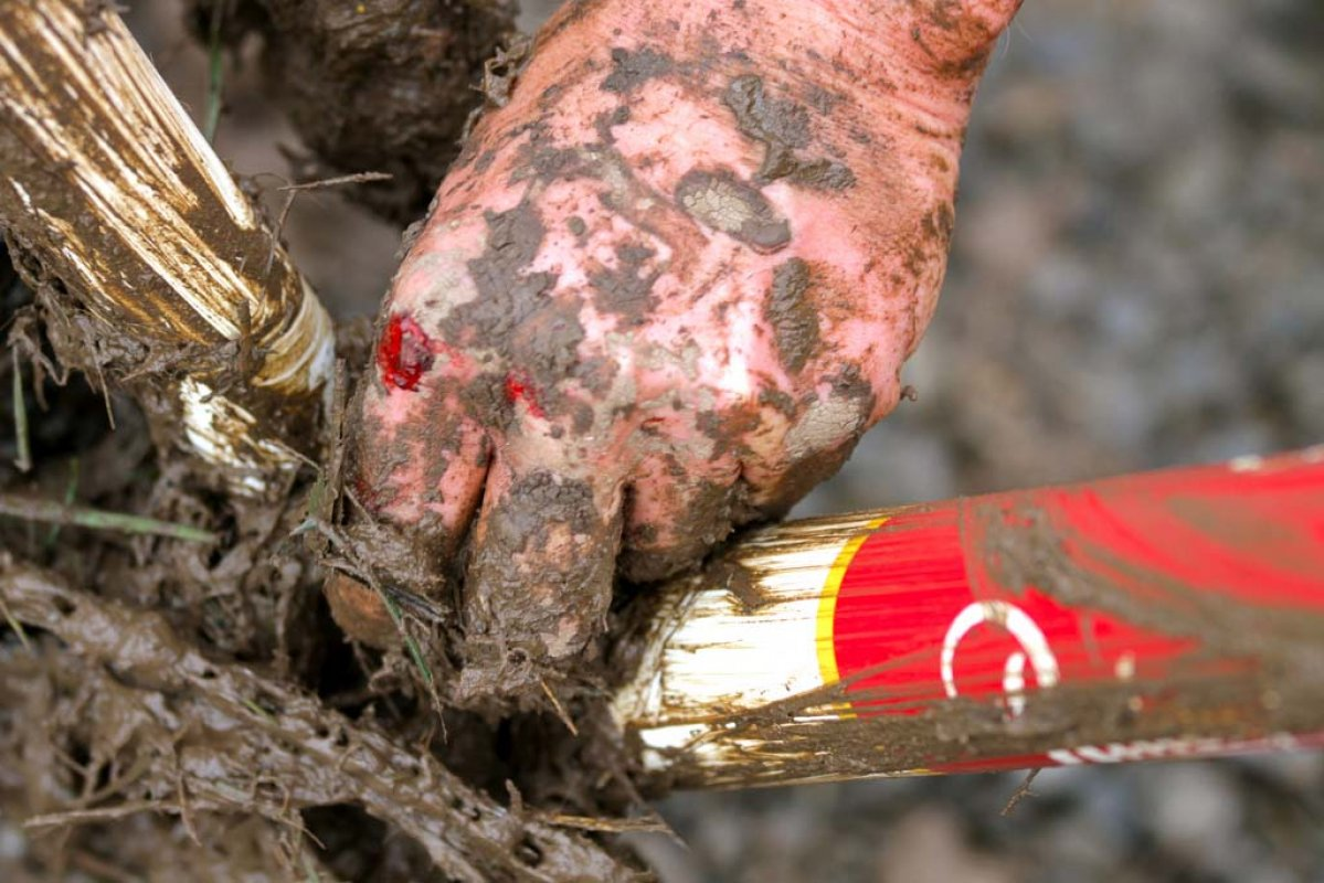 Mud and blood at Heiser Farms © Matt Haughey