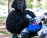 Shamrock Cycles racer James Foster nurses a baby in a gorilla costume. © Kent Baumgardt