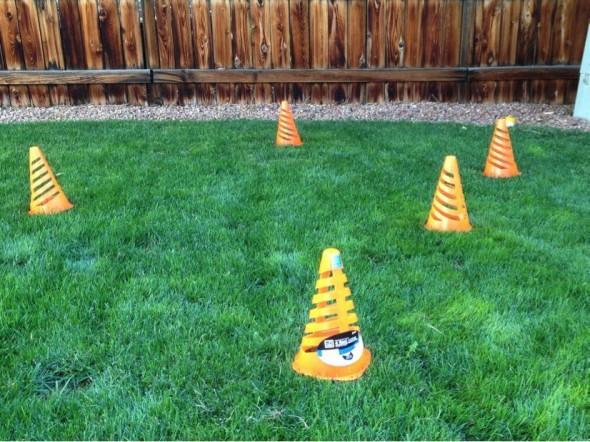 Even a small section of your backyard can be a spot to practice cyclocross skills with some grass and some cones.