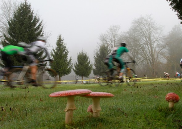 Mushrooms and fog greeted the racers for the final SCX race. © Janet Hill