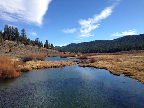 Plenty of scenic water near Lake Davis. photo: courtesy