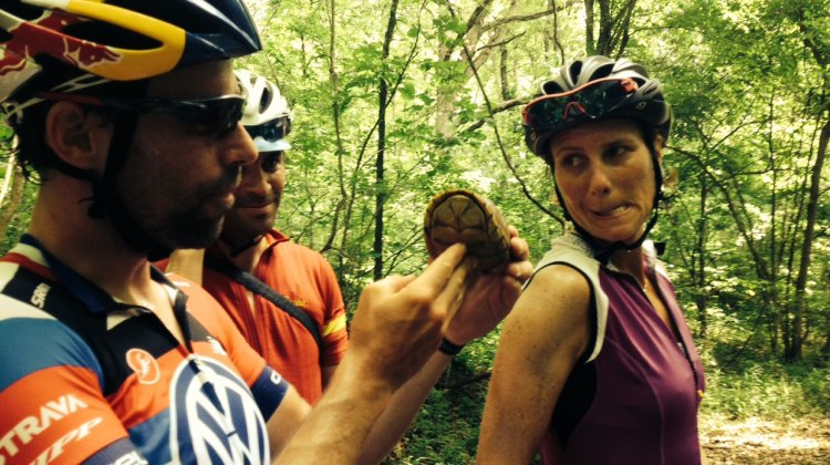 Tim Johnson and Jamie Kripke inspect one of the many turtles on the Katy Trail in Missouri as Johnson's wife, Lyne Bessette, makes a funny face.