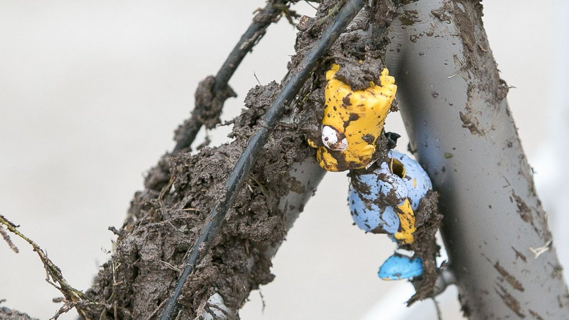 Want to know which bike is Hecht's A bike? Simple: look for the one where Bart Simpson is choking on a front derailleur cable. © Cyclocross Magazine