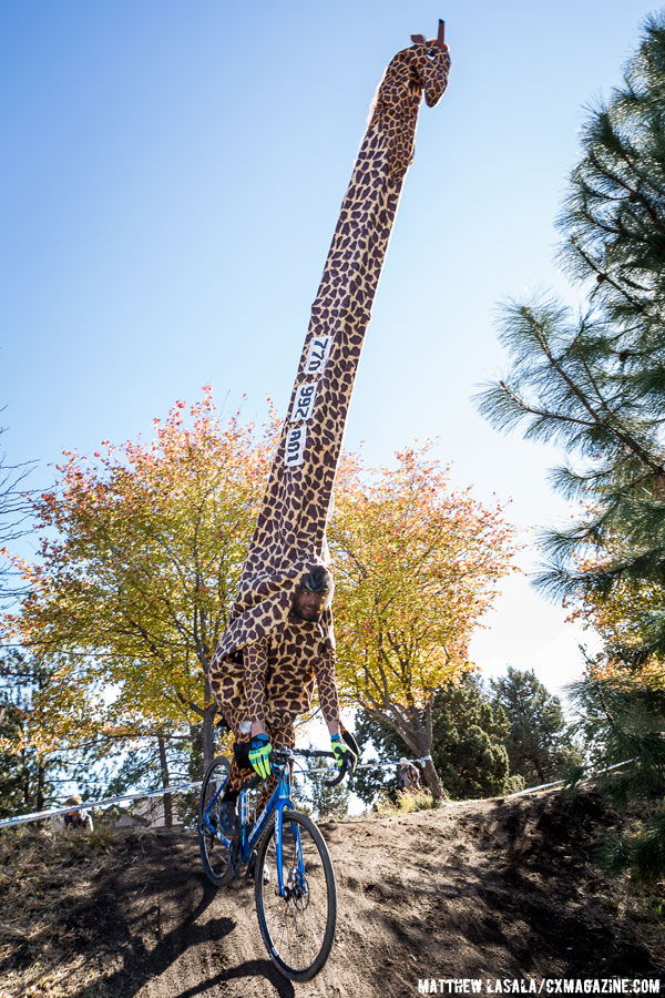 Giraffe deftly navigating the twists and turns of the course. © Matthew Lasala