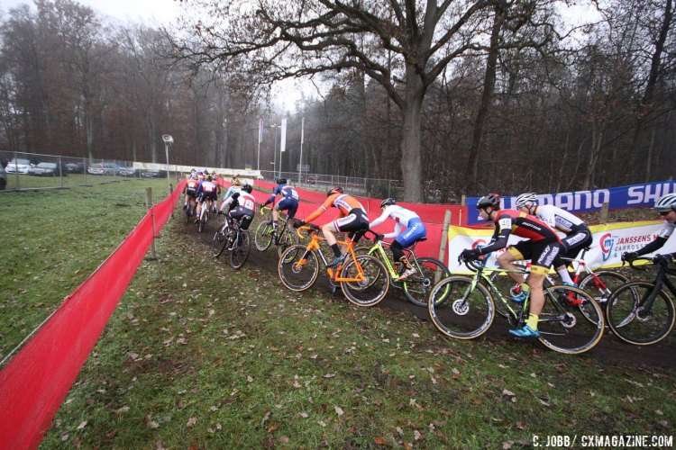 The pack at speed during the Zeven World Cup U23 Men's race. © C. Jobb / Cyclocross Magazine