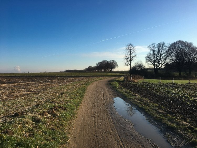 A picture of the Dutch countryside from my run. photo: Caleb Swartz