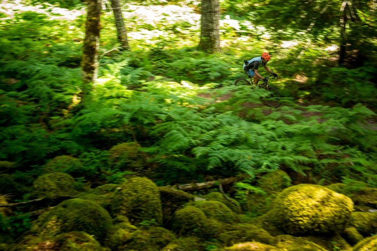 Cyclocross Magazine's Andrew Yee pushing the Kona Rove NRB DL through the woods of British Columbia. photo: courtesy