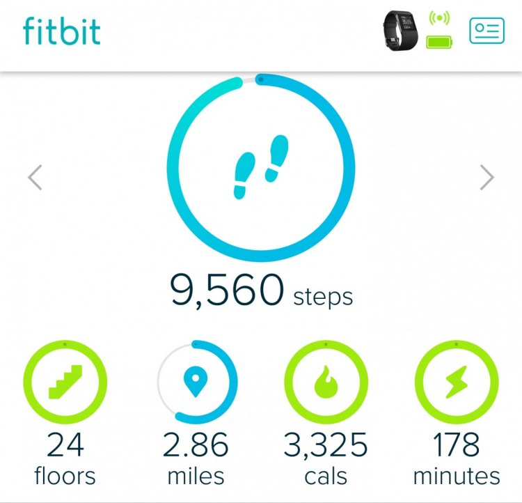 Fitbit Surge GPS/heartrate monitor smart watch syncs with your phone, and gives you estimations of activity level and calories burned. © Cyclocross Magazine