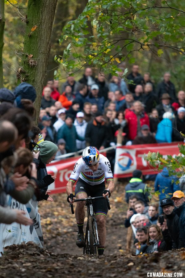 Wout van Aert had a tough day but rejoined Toon Aerts in the battle for second. 2018 Superprestige Gavere Men. © A. Yee / Cyclocross Magazine