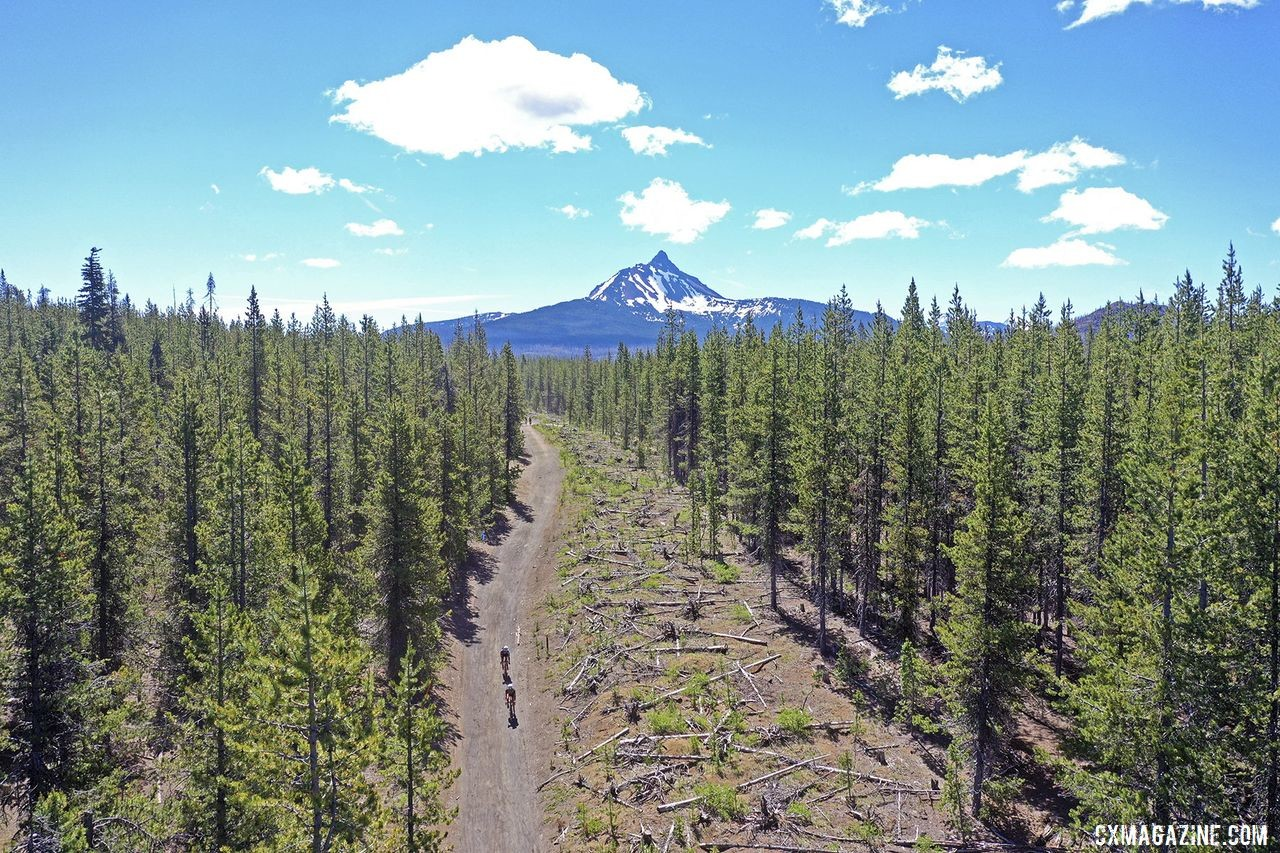 Riders wind through the pines on Day 1. 2019 Oregon Trail Gravel Grinder. © Adam Lapierre