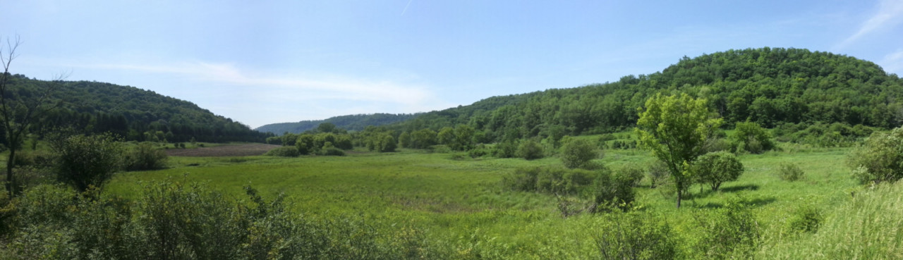 The Driftless Area features valleys with steep hills and beautiful views. © Z. Schuster