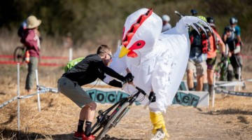 Why did the chicken need help remounting after the barriers? 2019 Surf City CX. © Jeff Vander Stucken