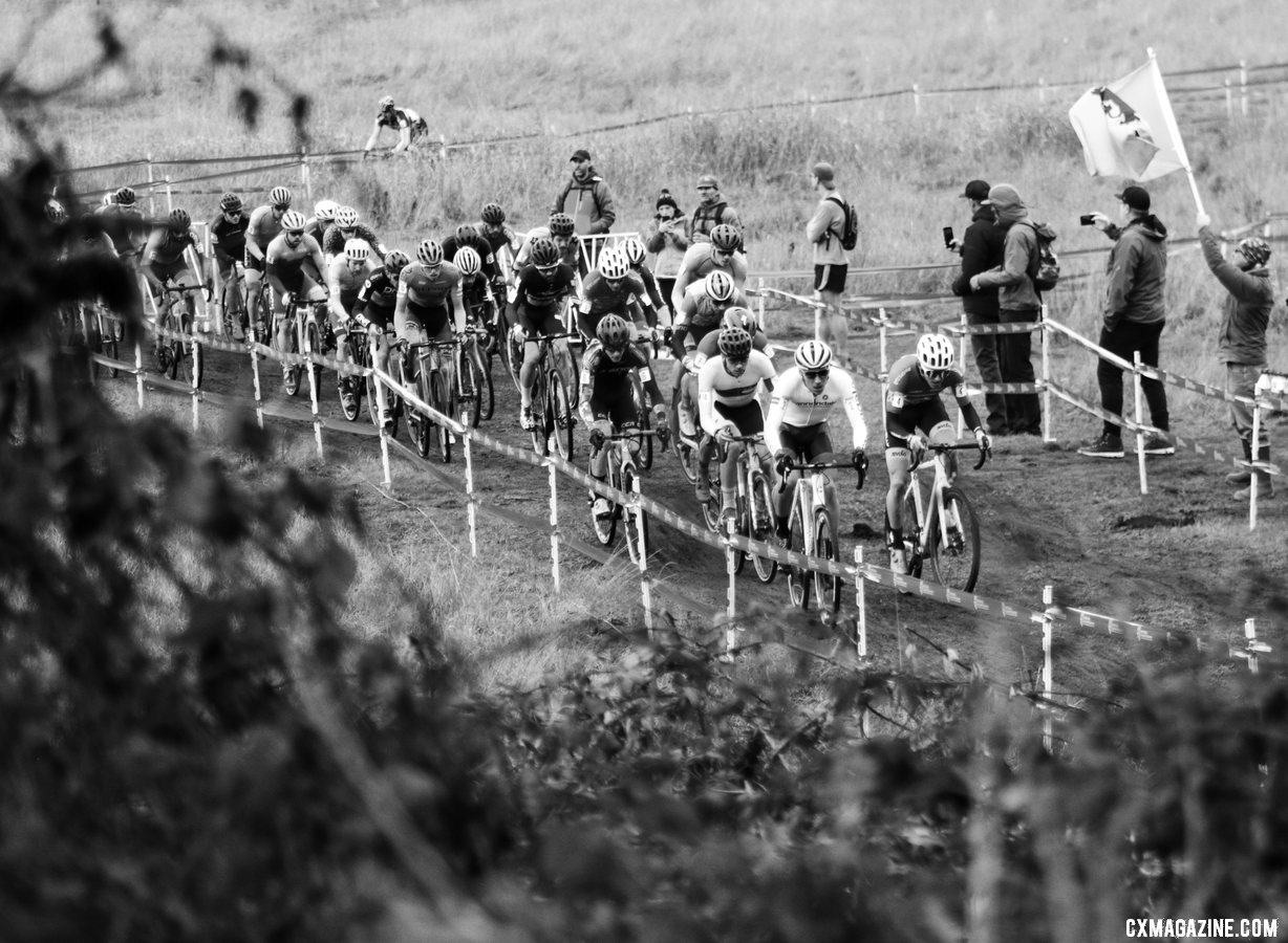 The Elite Men's field is tightly packet shortly after the start of the final race of the 2019 Cyclocross National Championships. Elite Men. 2019 Cyclocross National Championships, Lakewood, WA. © D. Mable / Cyclocross Magazine